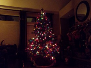 Our Lovely Tree