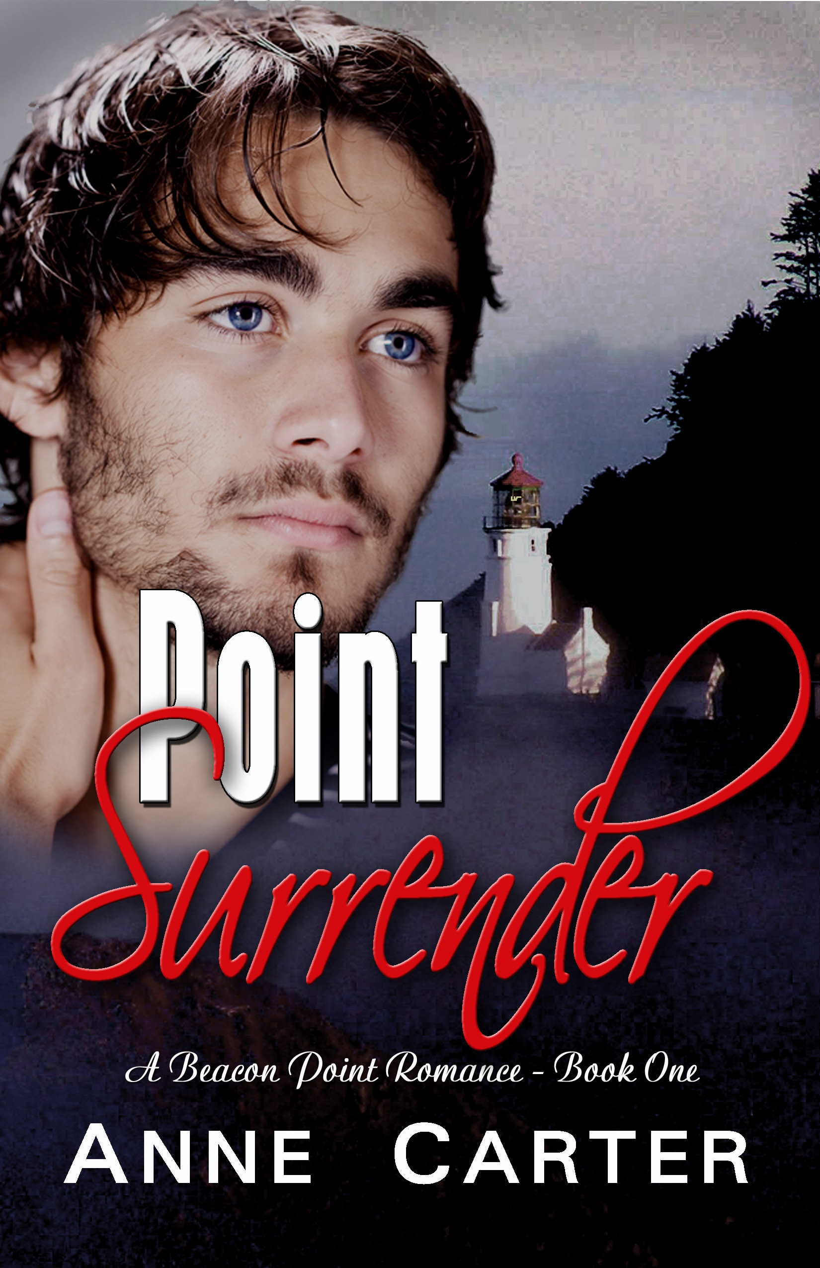 Point Surrender by Anne Carter